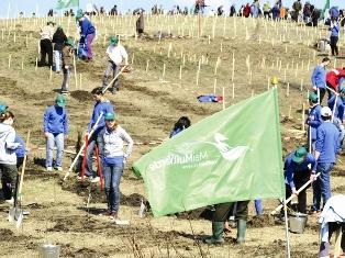 50.000 de puieţi plantaţi la Ploieşti, pentru combaterea poluării
