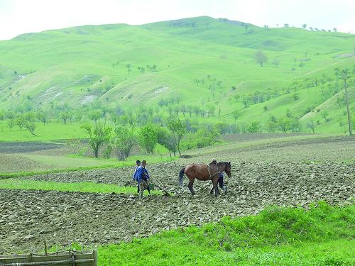 Subprefectul de Ruse, Bulgaria, preşedinte al unui grup de lucru al agricultorilor din regiunea Giurgiu-Ruse