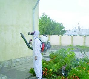 Tratamente avio pentru combaterea larvelor insectelor de disconfort