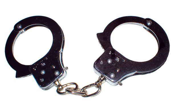 Politistii din judetul Clarasi au identificat autorii mai multor furturi si au recuperat prejudiciile in totalitate