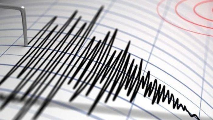 Cutremur cu magnitudinea 3,4 pe scara Richter în judeţul Buzău
