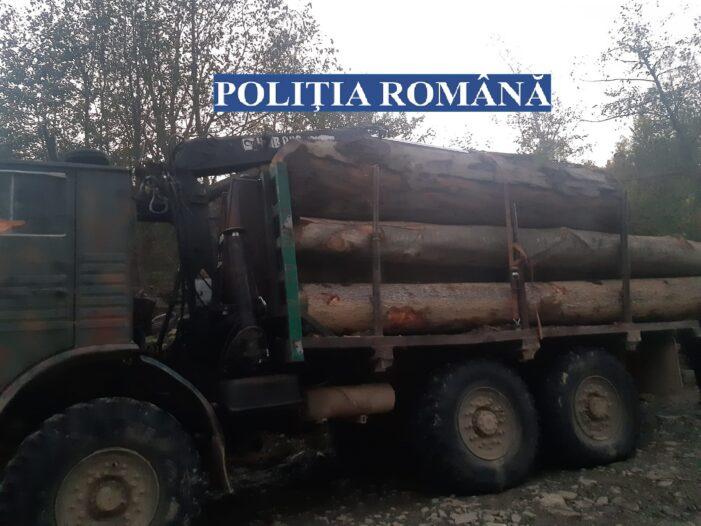 Camion încărcat cu lemne, confiscat de jandarmii buzoieni